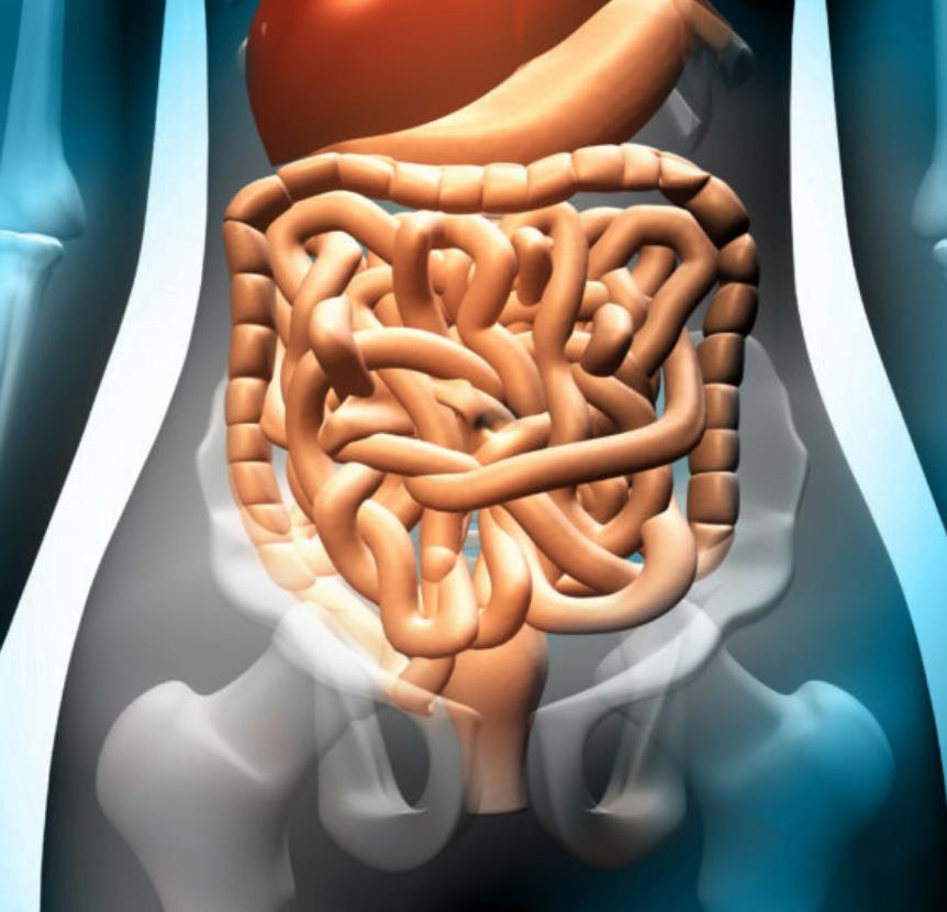 fot. Czy domowe sposoby na nerki wystarczą w przypadku ostrego bólu ?